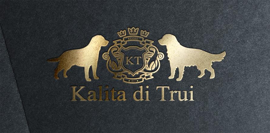 Logo-калита copy1