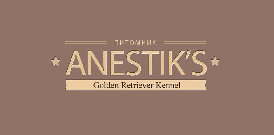 logo-anestiks1