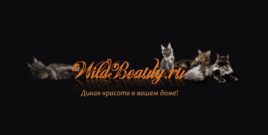 вилдбьюти1